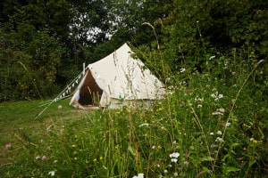 The canvas glamping bell tent set back into the woodland and surrounded by wild flowers